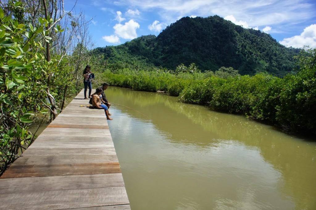 foto:mangrovecengkrong.blogspot.com