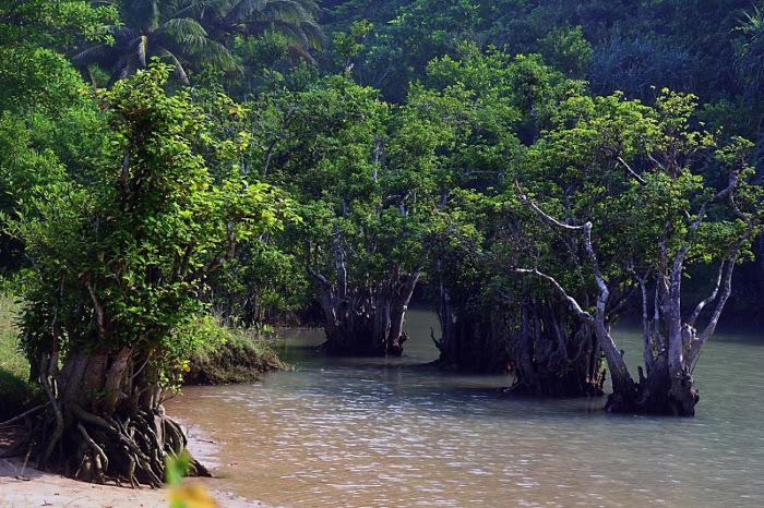foto:infopacitan.blogspot.com