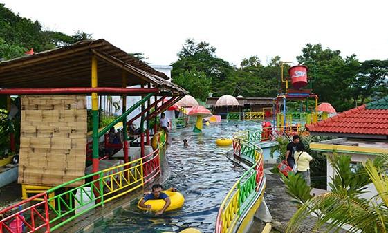 Download 99 Gambar Gajah Mungkur Paling Baru HD