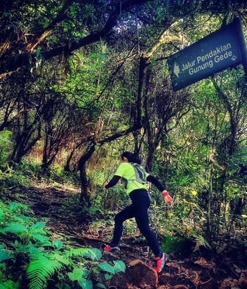 jalur pendakian gunung gede via selabintana