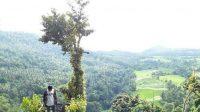 Rumah Pohon Tahura Wan Abdul Rachman