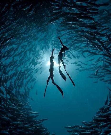 Alat Untuk Menyelam