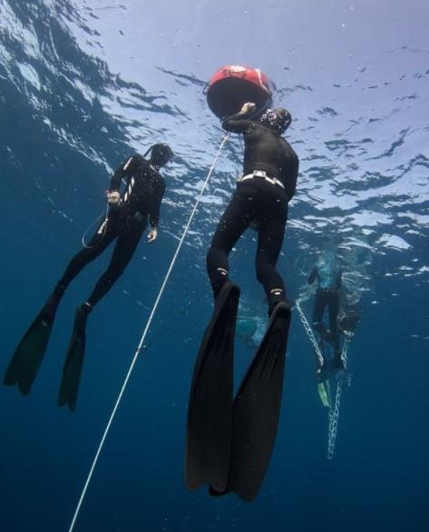 Tips Memilih Alat untuk Menyelam